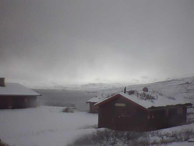 Webkamera på Tyinholmen i Jotunheimen